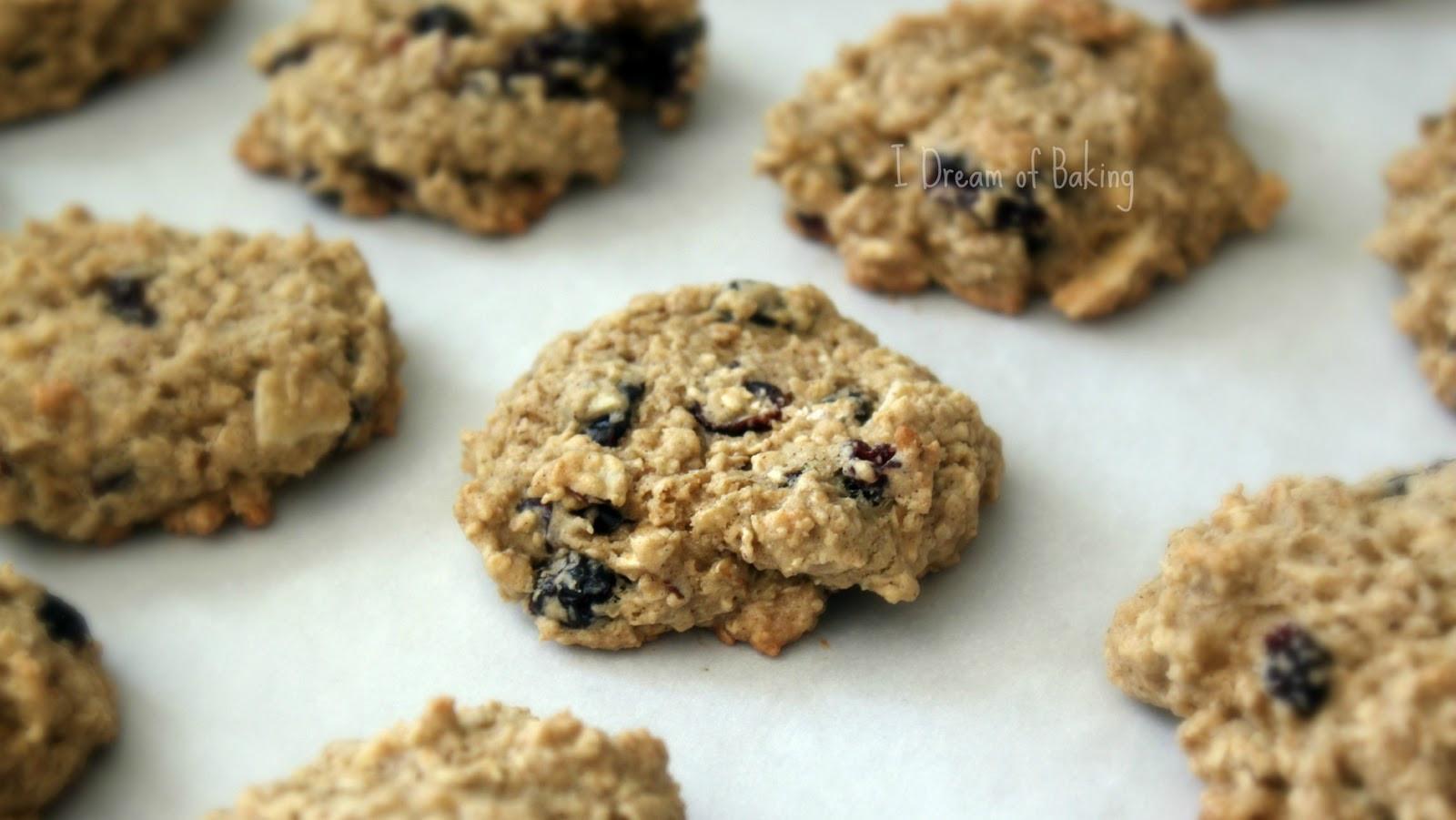 Low Calorie Oatmeal Cookies  Baker s Corner Low Fat Oatmeal Cookies Habibi Halaqas