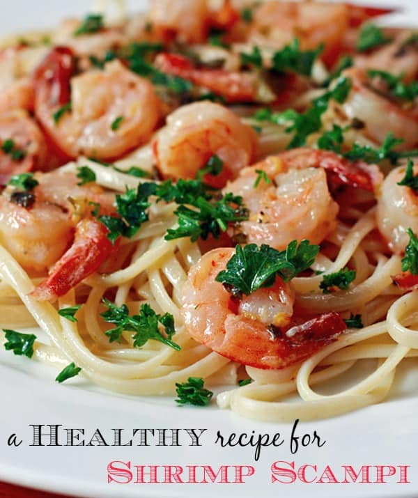 Low Calorie Shrimp Recipes  Low Fat Shrimp Dish Facesit