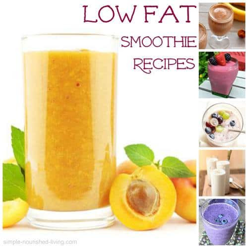 Low Calorie Smoothie Recipes  Low Fat Smoothies Weight Watchers Friendly Recipes