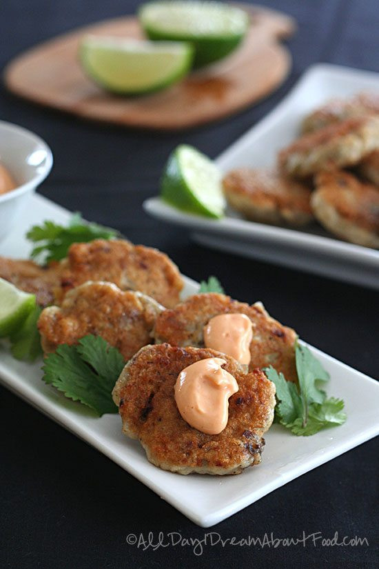 Low Carb Fish Recipes  Low Carb Thai Fish Cakes Recipe