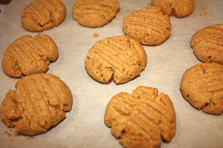 Low Carb Peanut Butter Cookies  Low Carb Peanut Butter Cookies Busy But Healthy