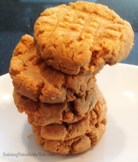 Low Carb Peanut Butter Cookies  Best Low Carb Peanut Butter Cookie Recipe Baking Outside