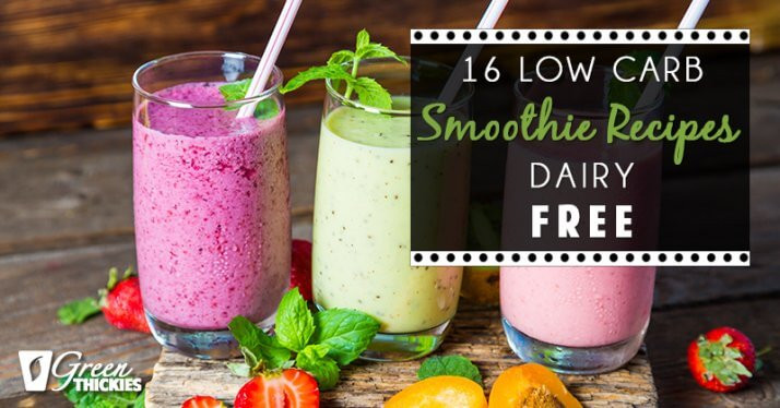 Low Carb Smoothie Recipes  16 Low Carb Smoothie Recipes Dairy Free