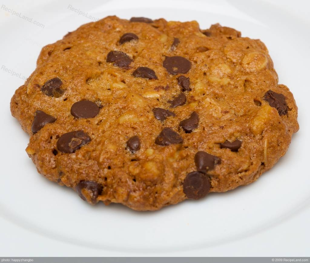 Low Fat Cookie Recipes  Low Fat and Low Calorie Oatmeal Chocolate Chip Cookies Recipe