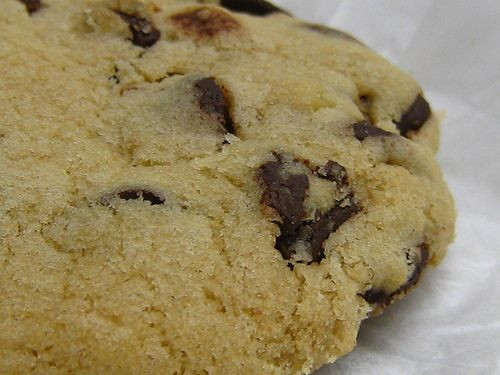 Low Fat Cookie Recipes  Best Low fat Chocolate Chip Cookies Ever Recipe — Dishmaps