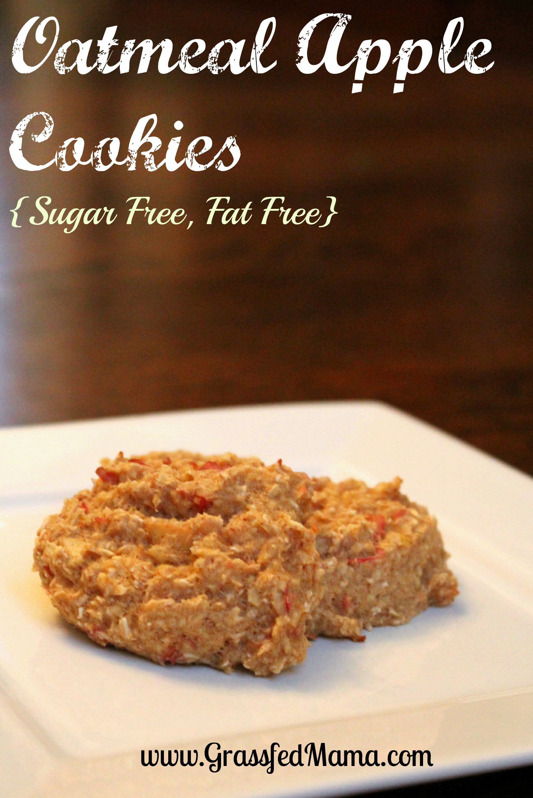 Low Fat Cookie Recipes  Low Fat Low Sugar Oatmeal Apple Cookies Grassfed Mama
