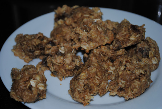Low Fat Cookie Recipes  Low Fat Oatmeal Apricot Cookies Recipe Food