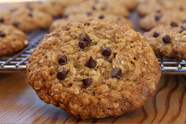 Low Fat Cookie Recipes  Low Fat Oatmeal Chocolate Chip Cookies Recipe Girl