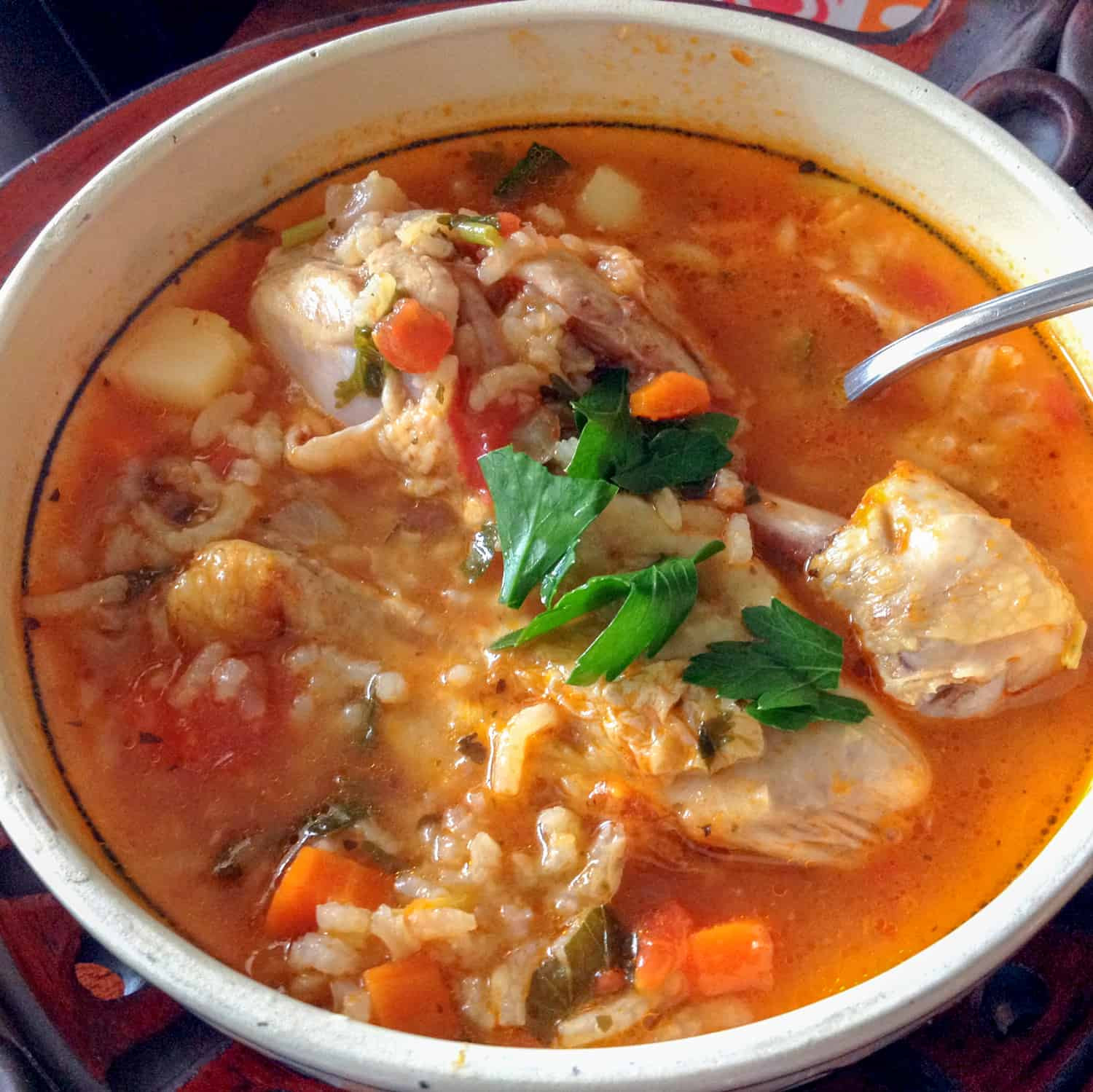 Mexican Chicken Soup  Mexican Caldo de Pollo Chicken Soup Mexican Style