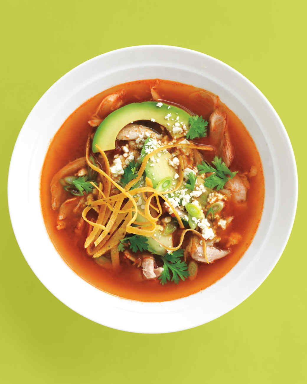Mexican Chicken Tortilla Soup  10 Must Make Mexican Soup Recipes