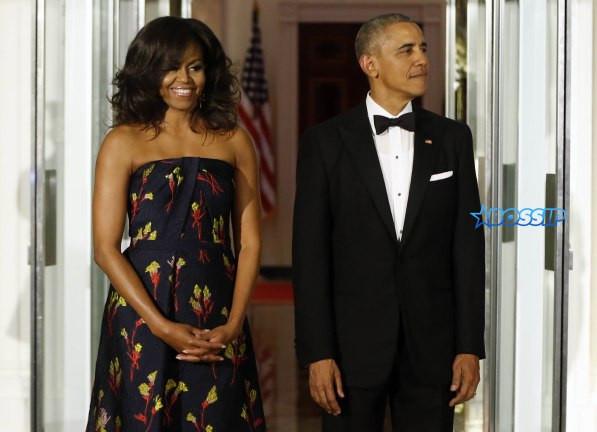 Michelle Obama State Dinner 2016 Dress  Michelle Obama's Jason Wu State Dinner Dress