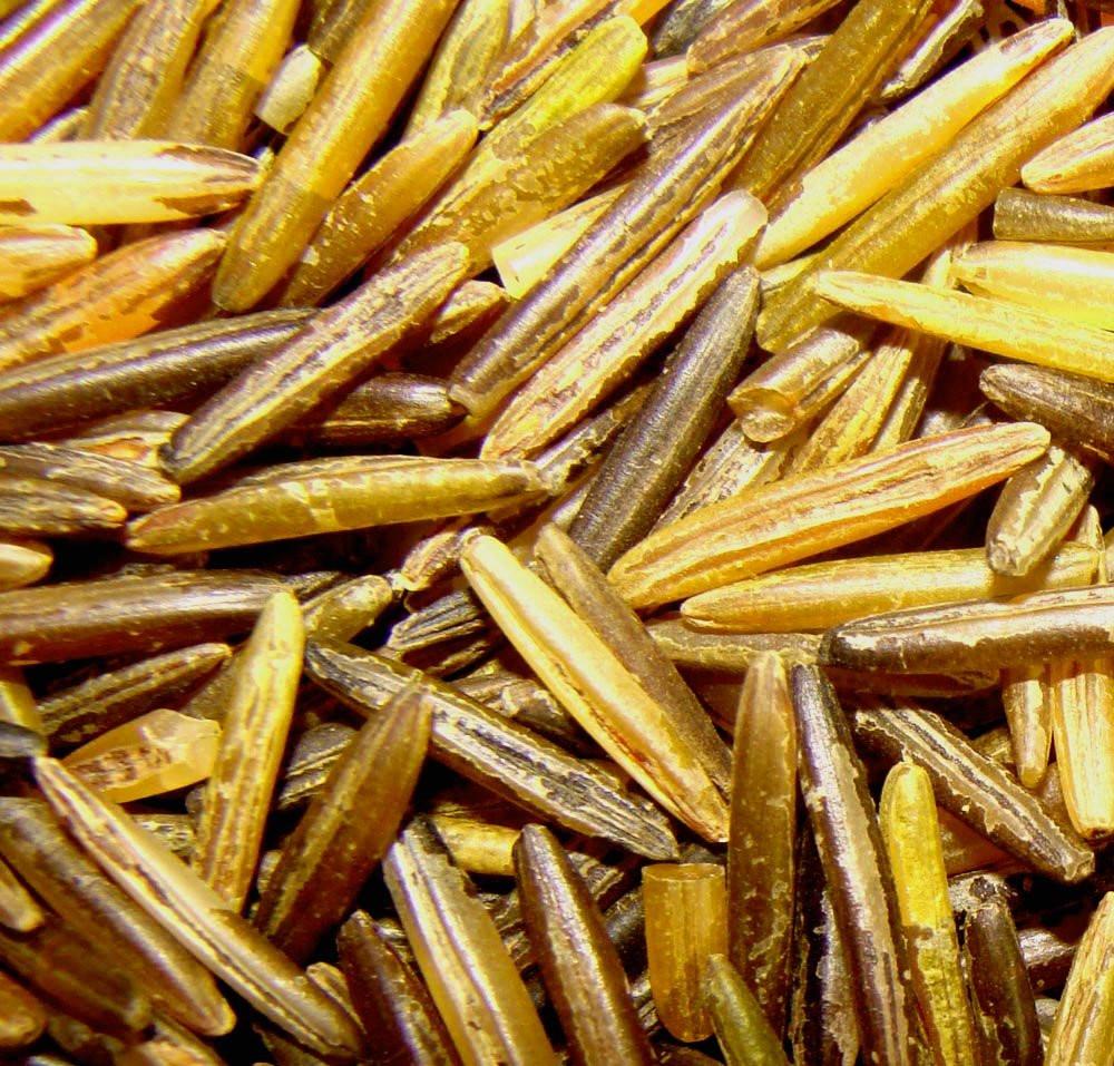 Minnesota Wild Rice  Amazon Minnesota Grown Wild Rice 5 lb Legumes