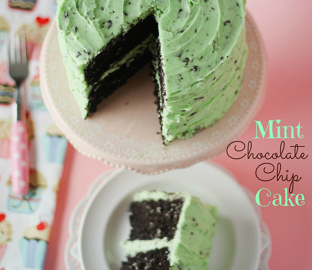 Mint Chocolate Chip Cake  51 Best Chocolate Cake Recipes for 2016