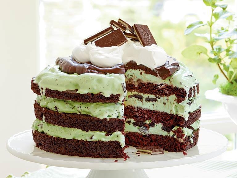 Mint Chocolate Chip Cake  Mint Chocolate Chip Ice Cream Cake Recipe