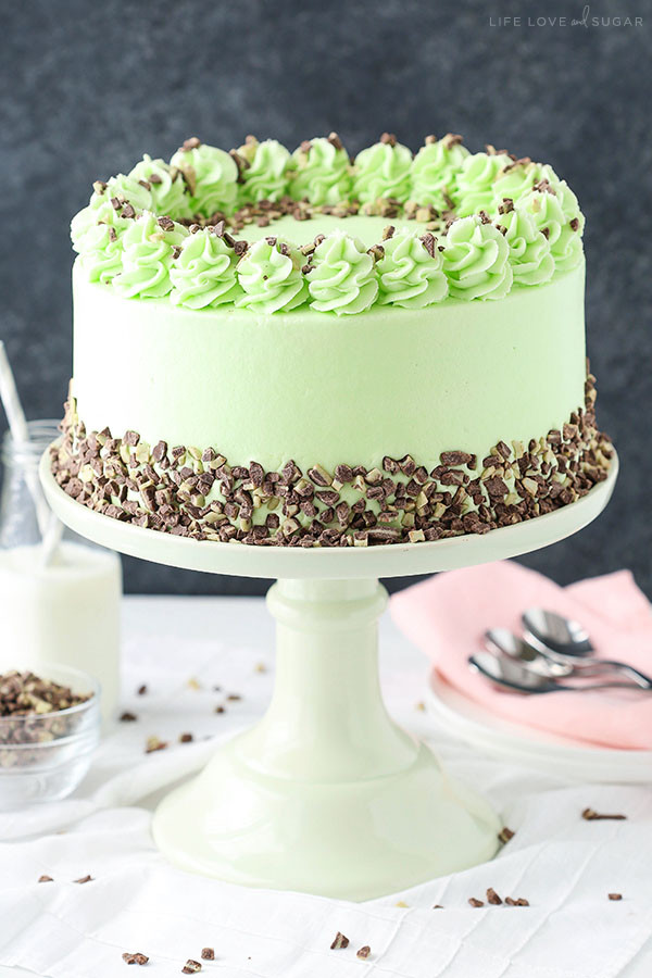 Mint Chocolate Chip Cake  Mint Chocolate Chip Layer Cake Life Love and Sugar