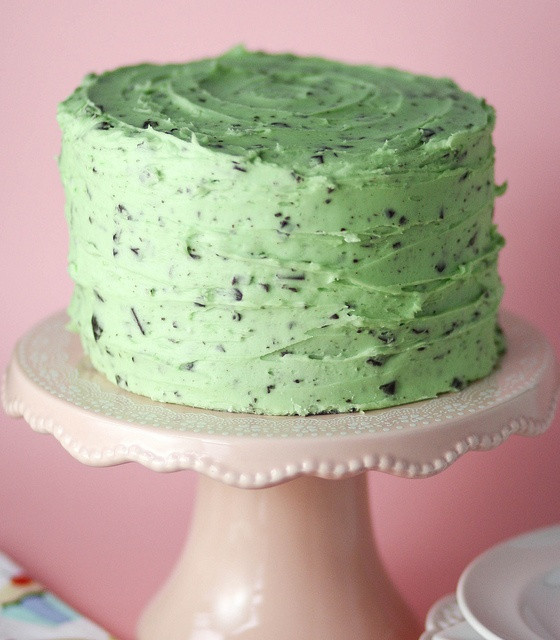 Mint Chocolate Chip Cake  Party Rock 10 Amazing Birthday Cake Ideas For Grown ups