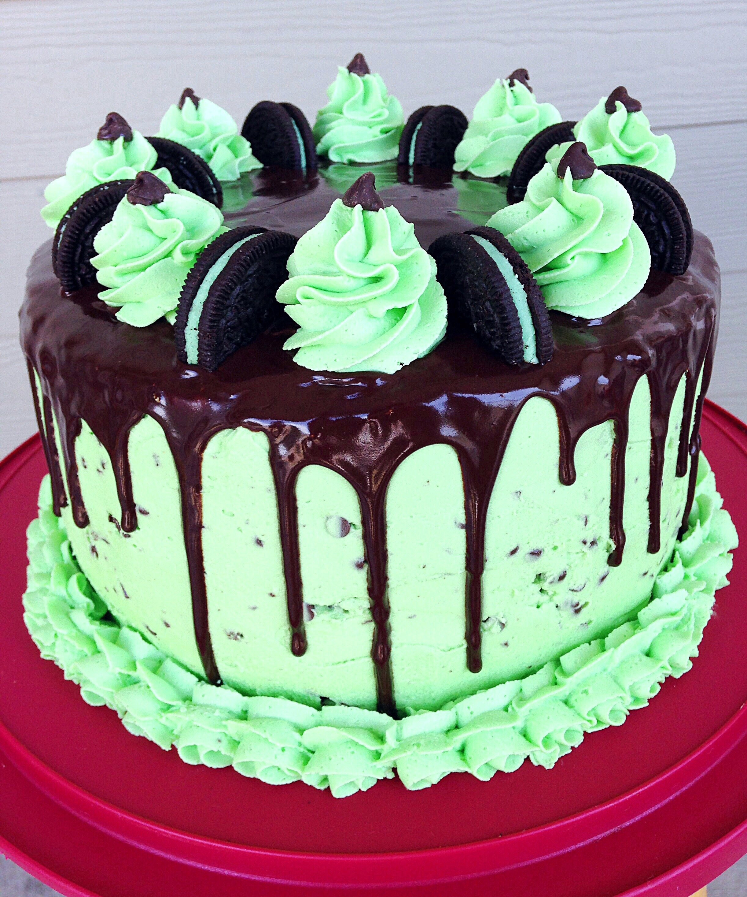 Mint Chocolate Chip Cake  Today I made my cousin a mint chocolate chip birthday cake
