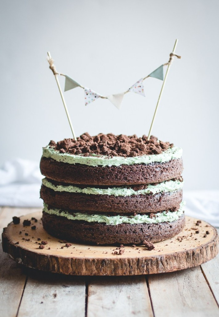 Mint Chocolate Chip Cake  Mint Chocolate Chip Cake Butterlust