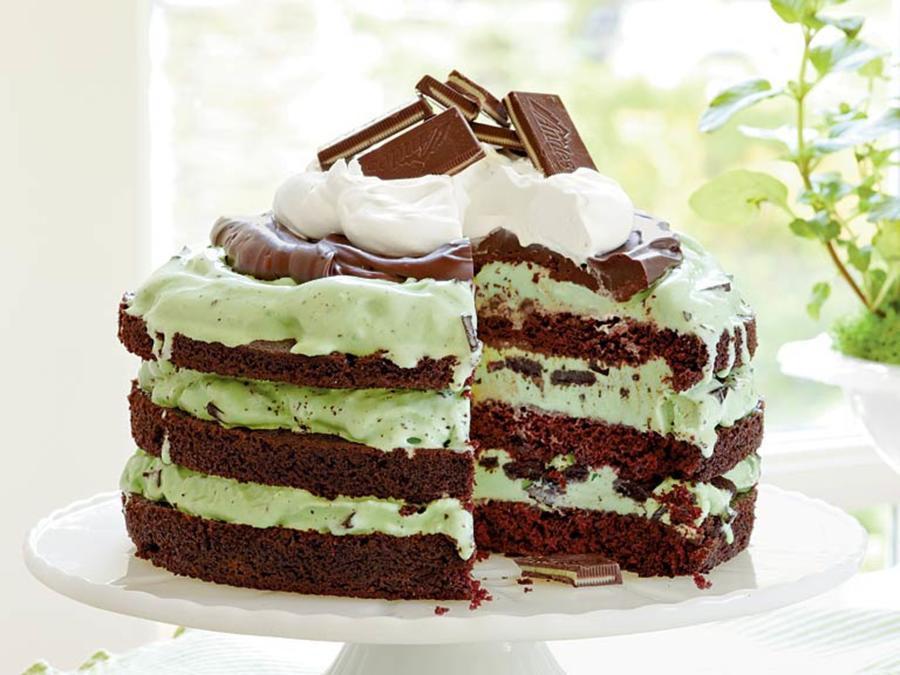 Mint Chocolate Chip Ice Cream Cake  Mint Chocolate Chip Ice Cream Cake Recipe