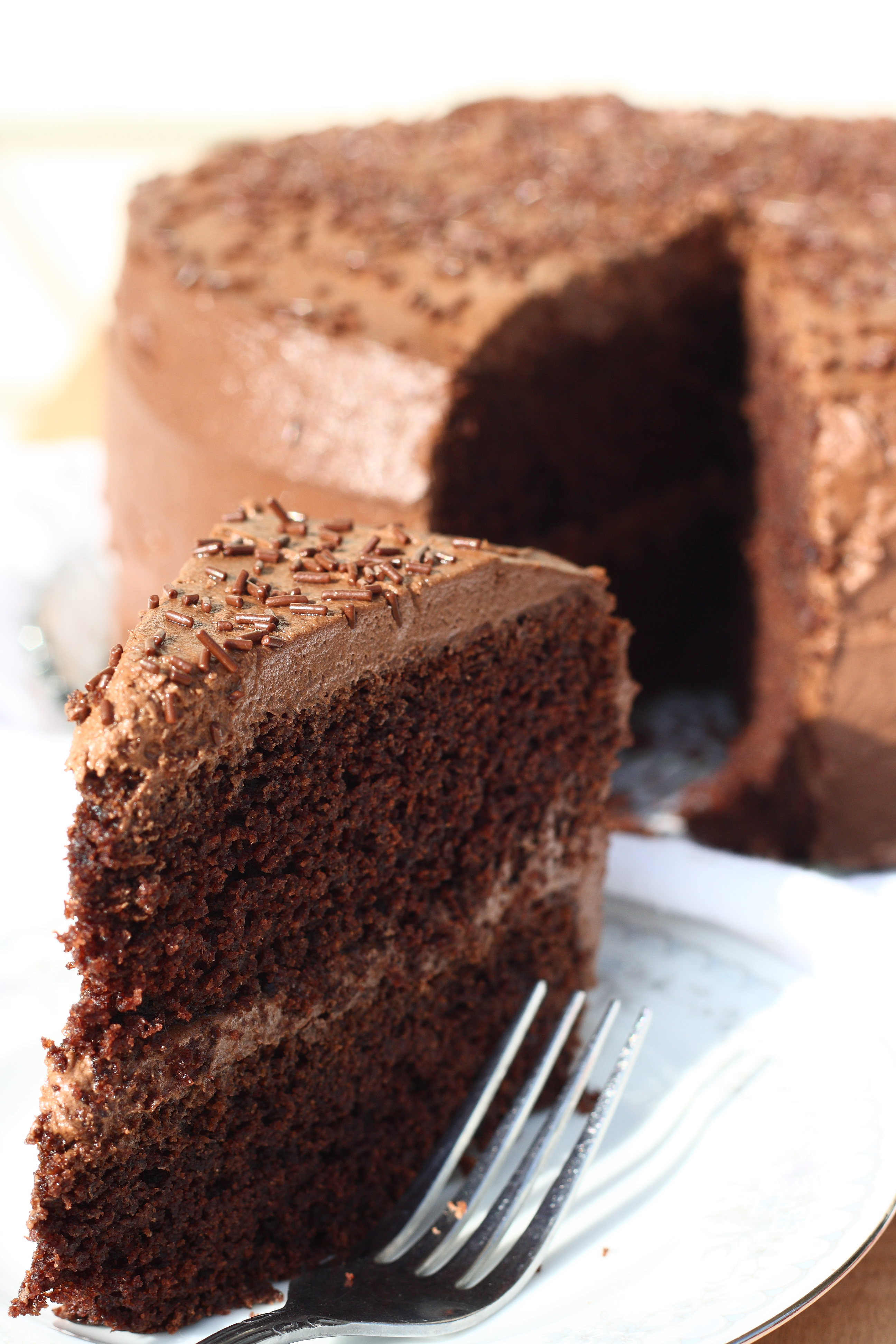 Moist Cake Recipe  Super Moist Gluten Free Chocolate Cake Recipe For Him