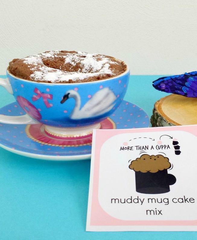 Mug Cake With Cake Mix  Mug cake mix More ts