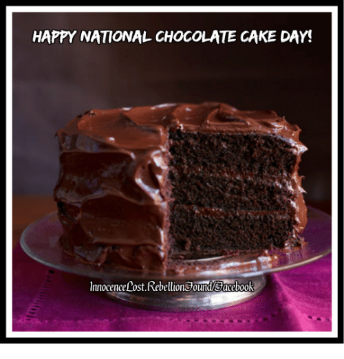 National Chocolate Cake Day  Search Cake Day Memes on me