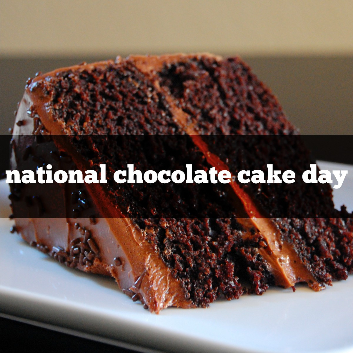 National Chocolate Cake Day  NATIONAL CHOCOLATE CAKE DAY – redlegagenda