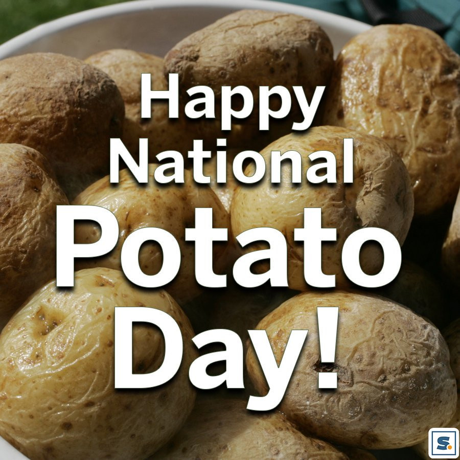 National Potato Day  National Potato Day Latest news Breaking headlines and