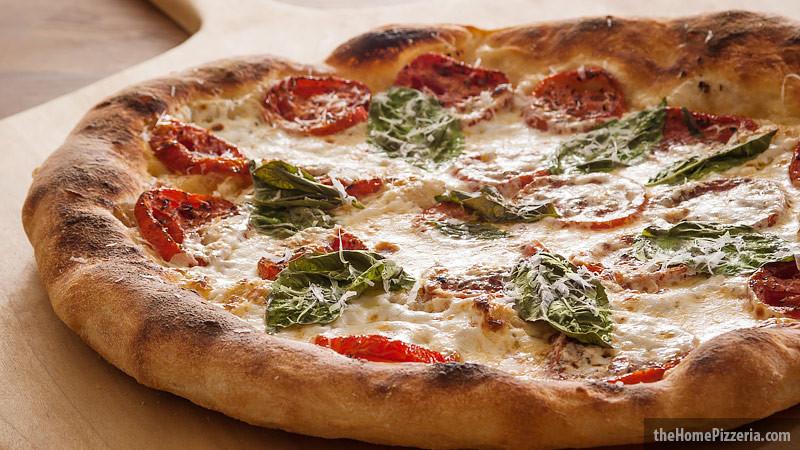 New York Style Pizza Dough Recipe  New York Style Pizza Dough Recipe