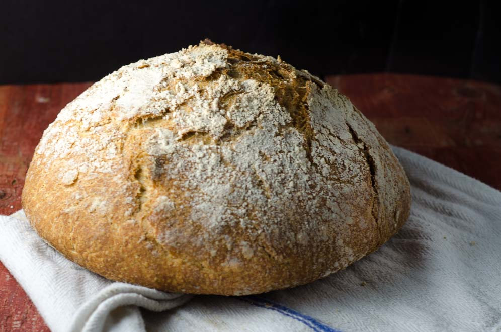 No Knead Sourdough Bread  Our Daily Bread Whole Grain No Knead Sourdough