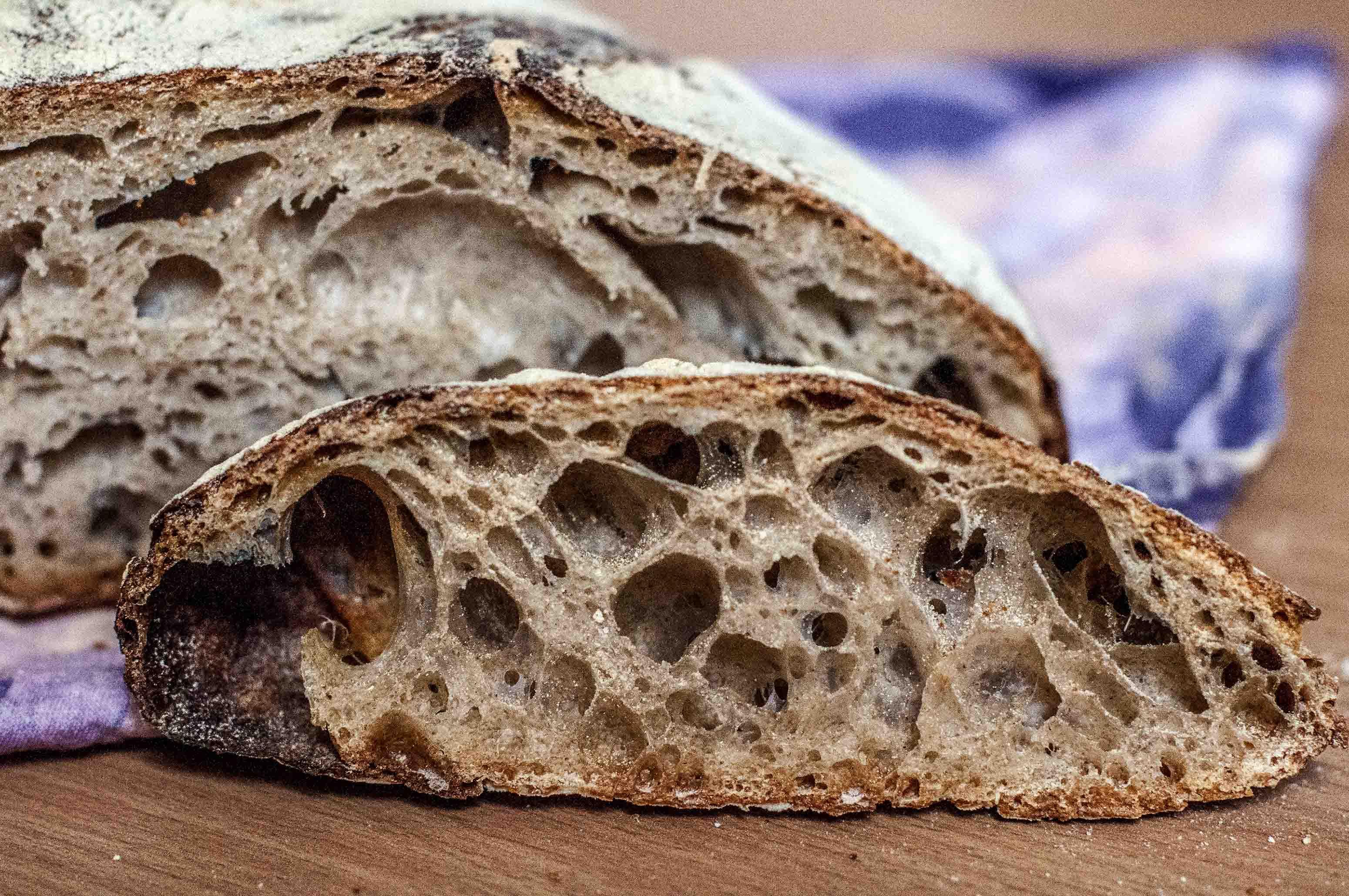 No Knead Sourdough Bread  No Knead Sourdough with Old Dough Bread and panatico