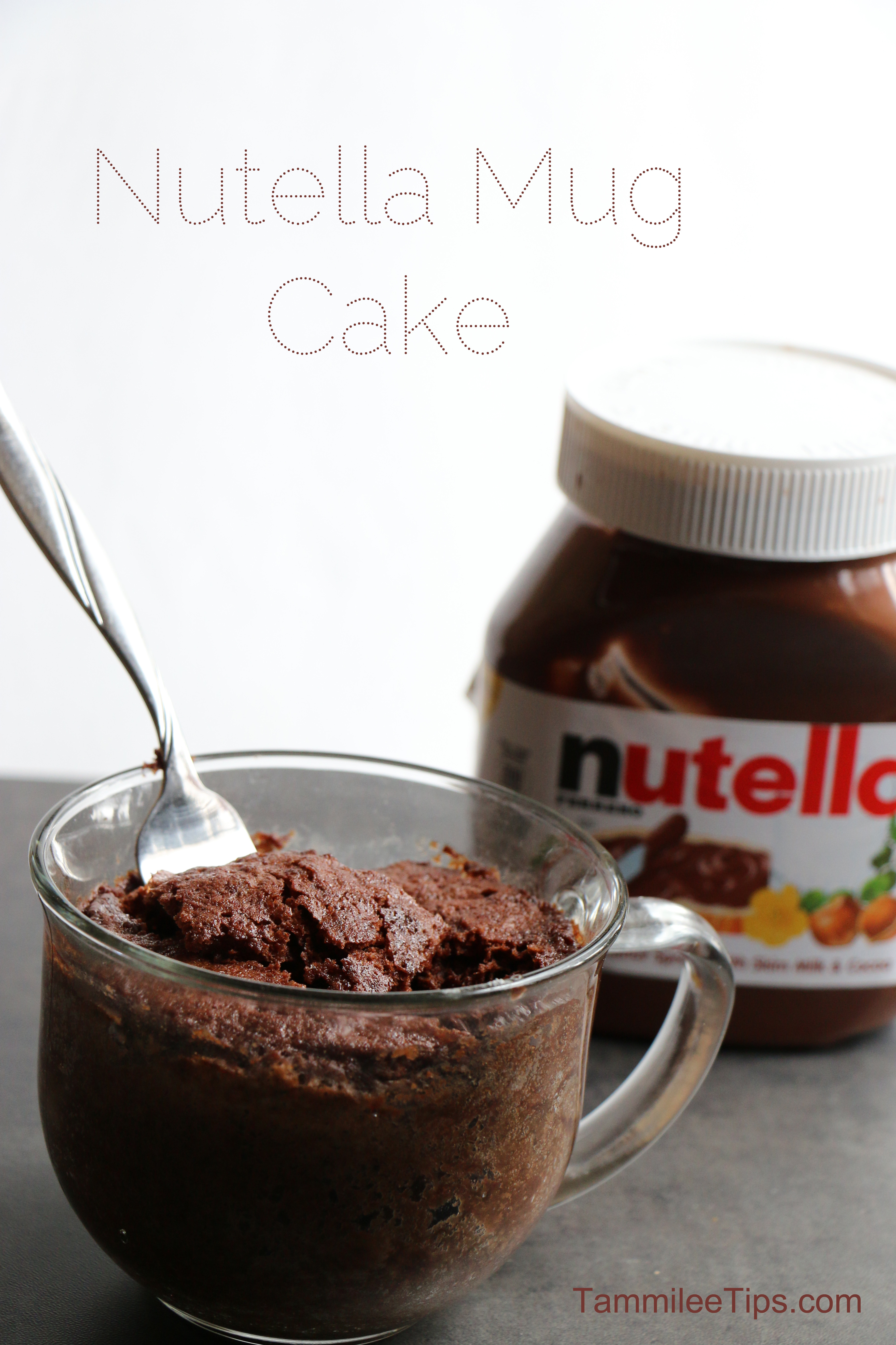 Nutella Mug Cake  Super easy to make Nutella Mug Cake Recipe