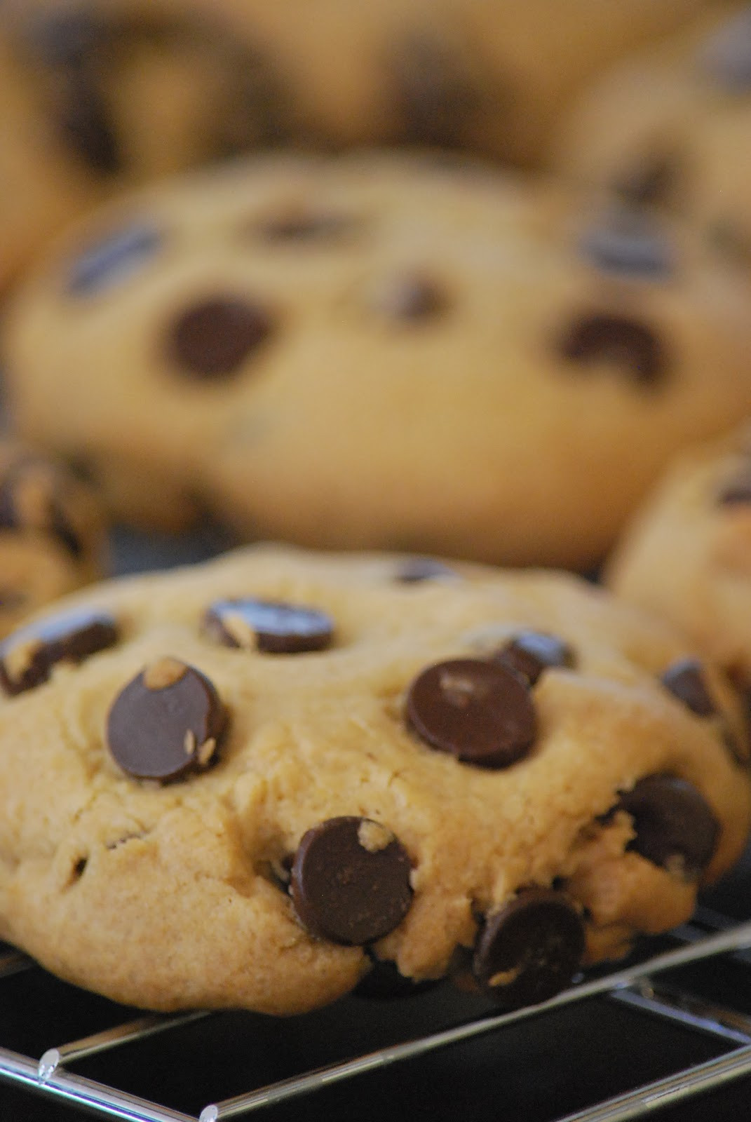 Nyt Chocolate Chip Cookies  My story in recipes New York Times Chocolate Chip Cookies