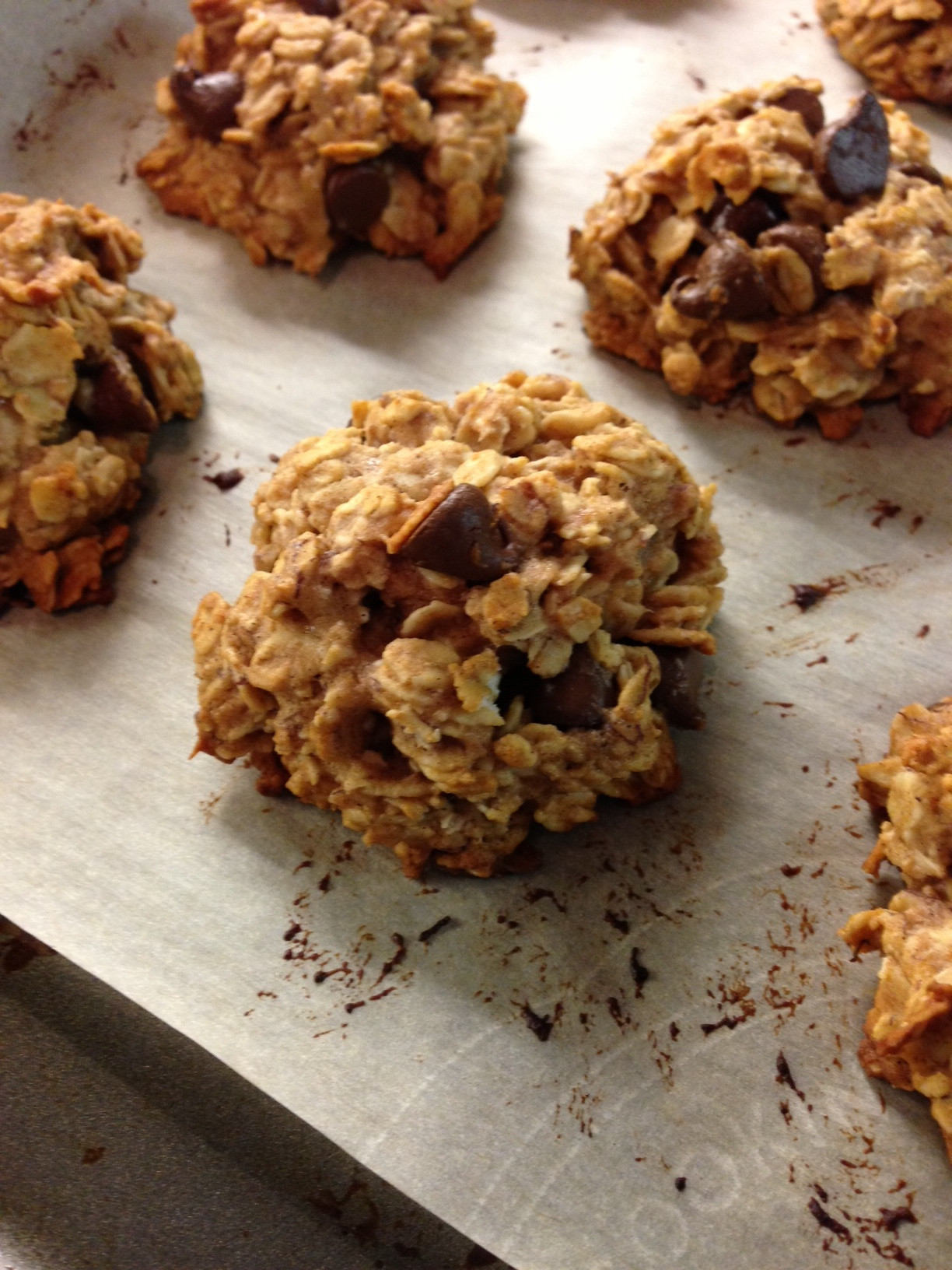 Oatmeal Chocolate Chip Cookies Healthy  Healthy Oatmeal Chocolate Chip Cookies Lauren Follett