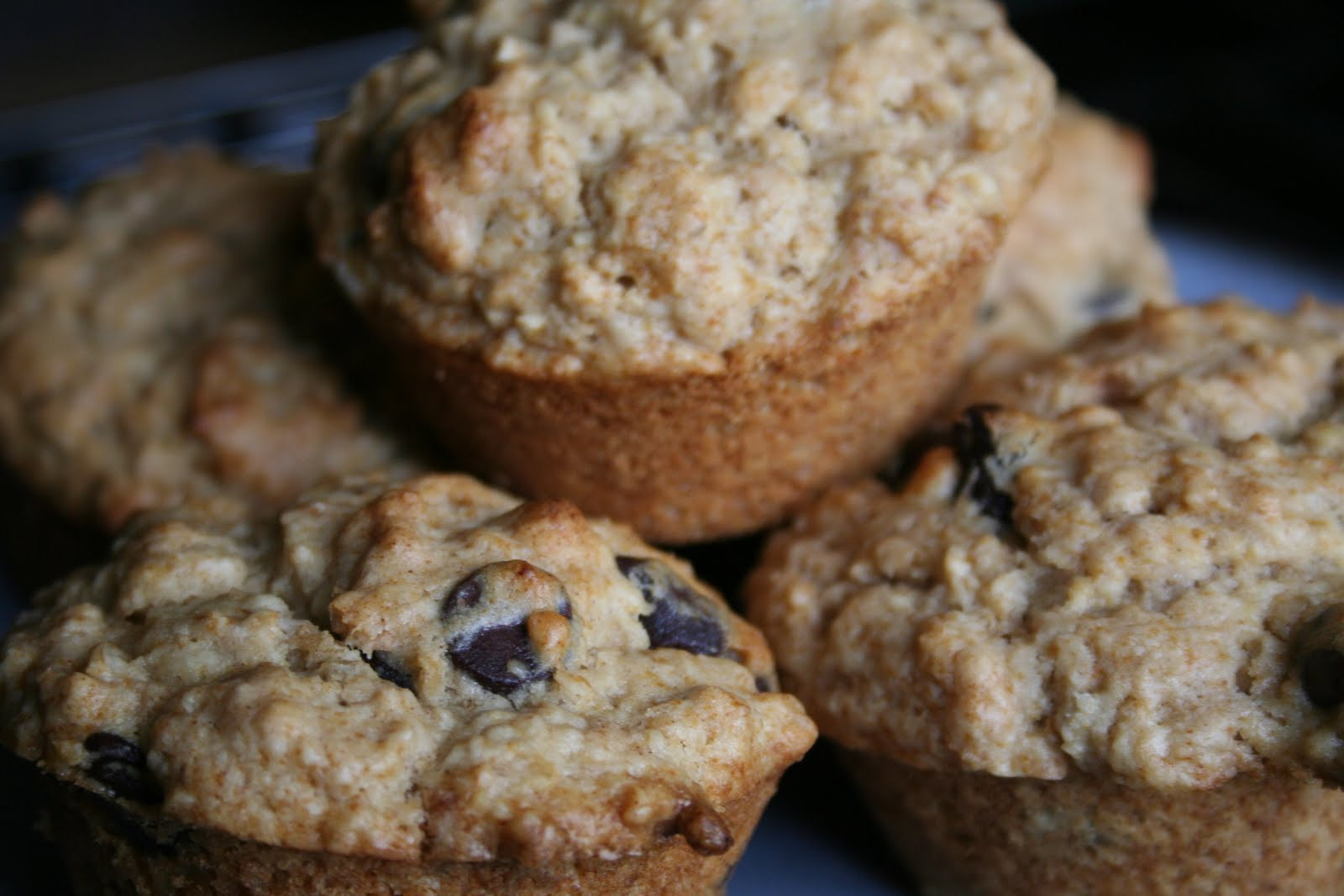 Oatmeal Chocolate Chip Muffins  Mama Gone Green Oatmeal Chocolate Chip Muffins