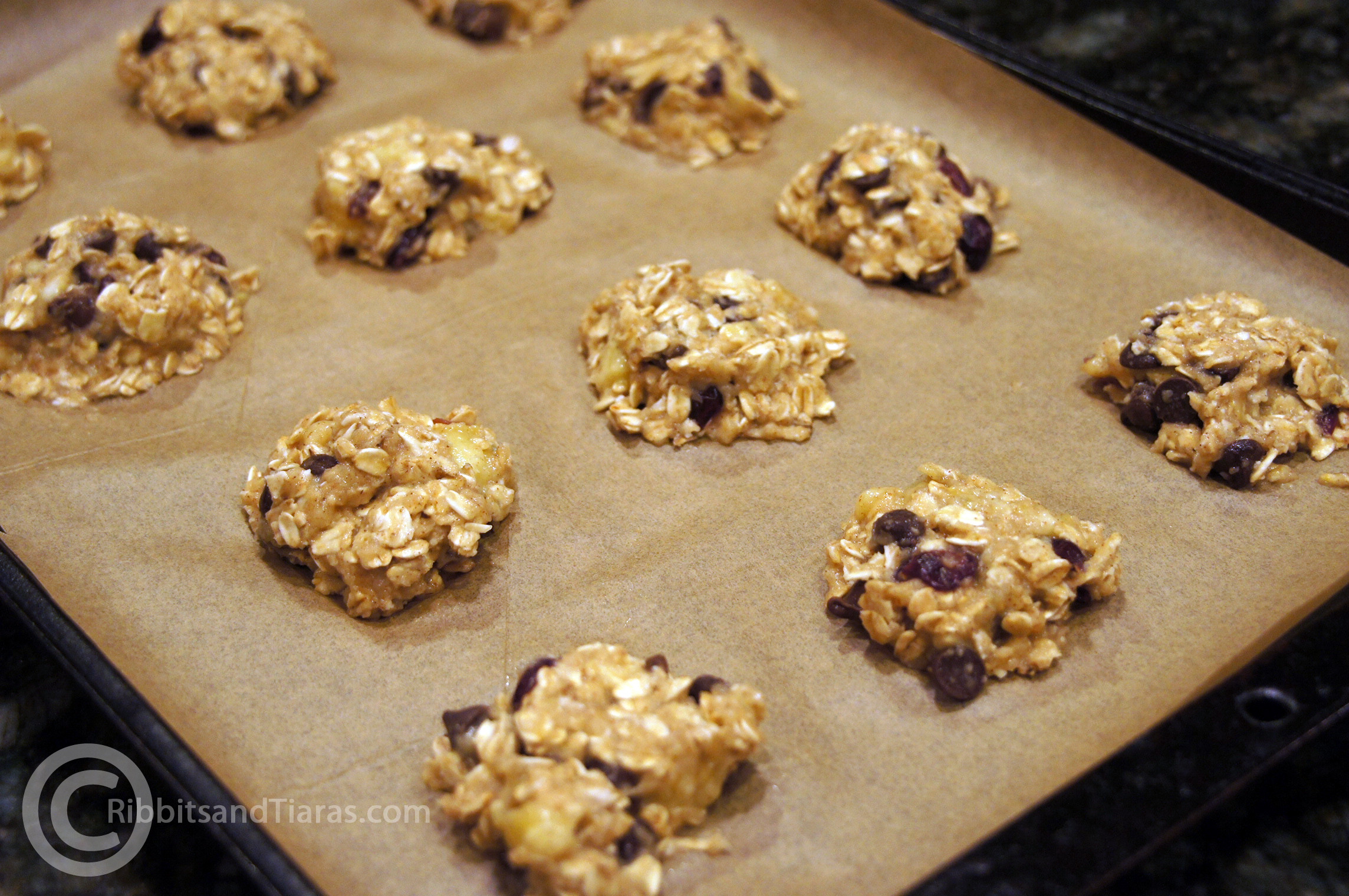 Oatmeal Cranberry Cookies  Banana Cranberry Oatmeal Cookies no egg – no flour no