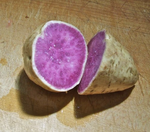 Okinawan Sweet Potato  10 Unusual Ve ables You Probably Haven't Tried