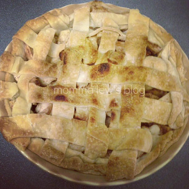 Old Fashioned Apple Pie  This is an old stand by Betty Crocker recipe that I have