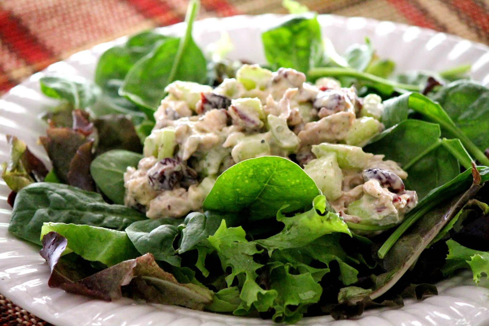 Paleo Chicken Salad  Paleo Chicken Salad