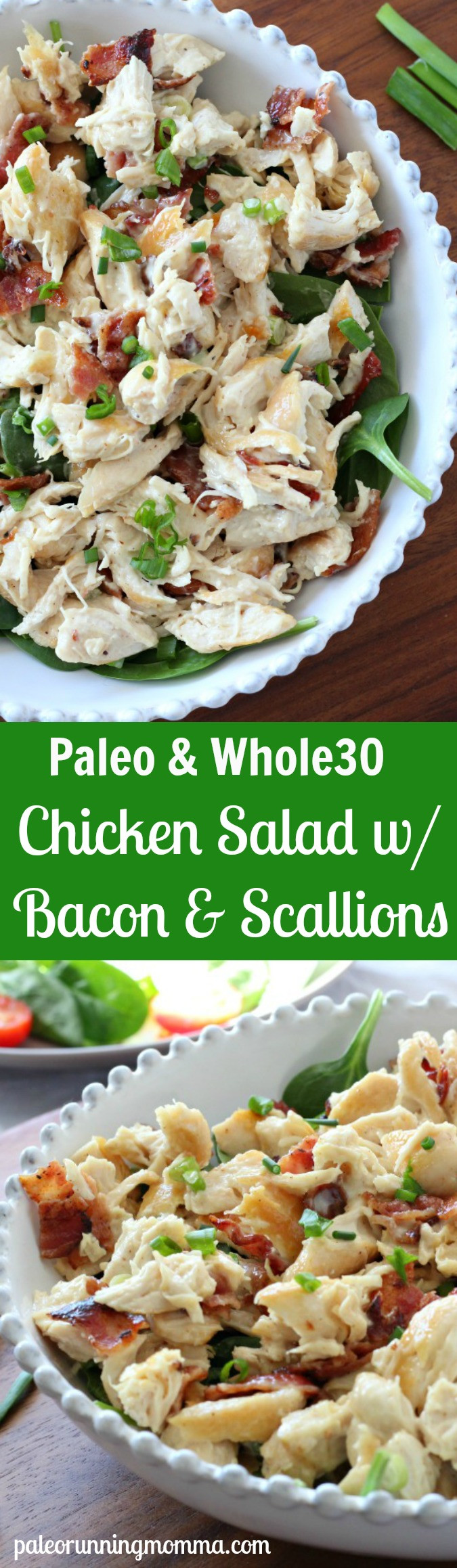 Paleo Chicken Salad  Paleo Chicken Salad with Bacon & Green ion