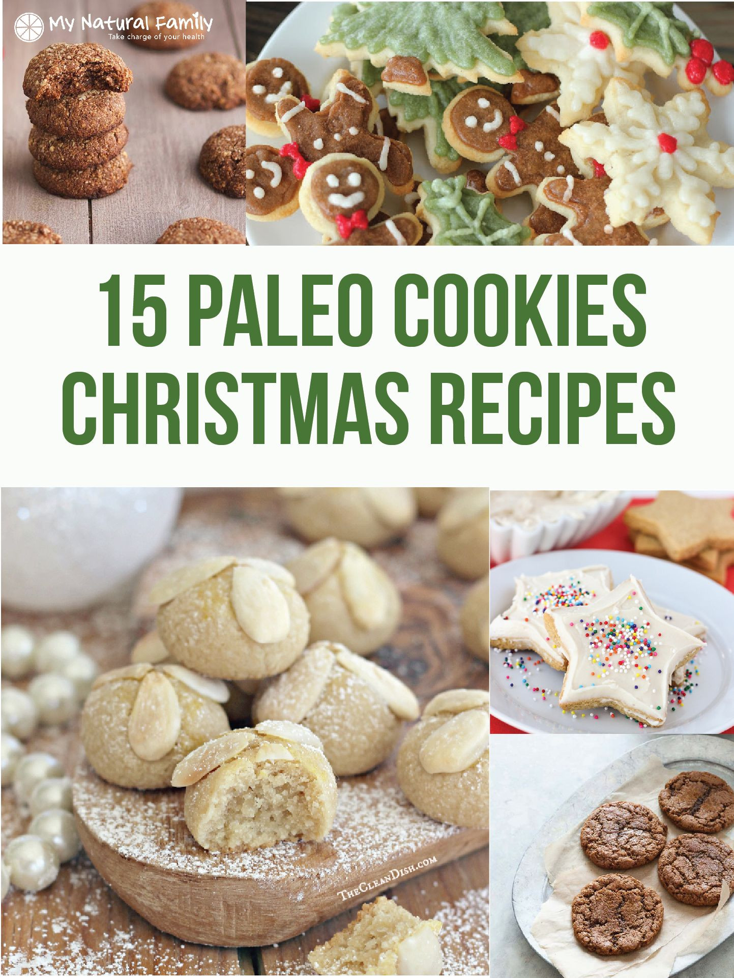 Paleo Christmas Cookies  The Best Paleo Christmas Cookies Leave Some for Santa