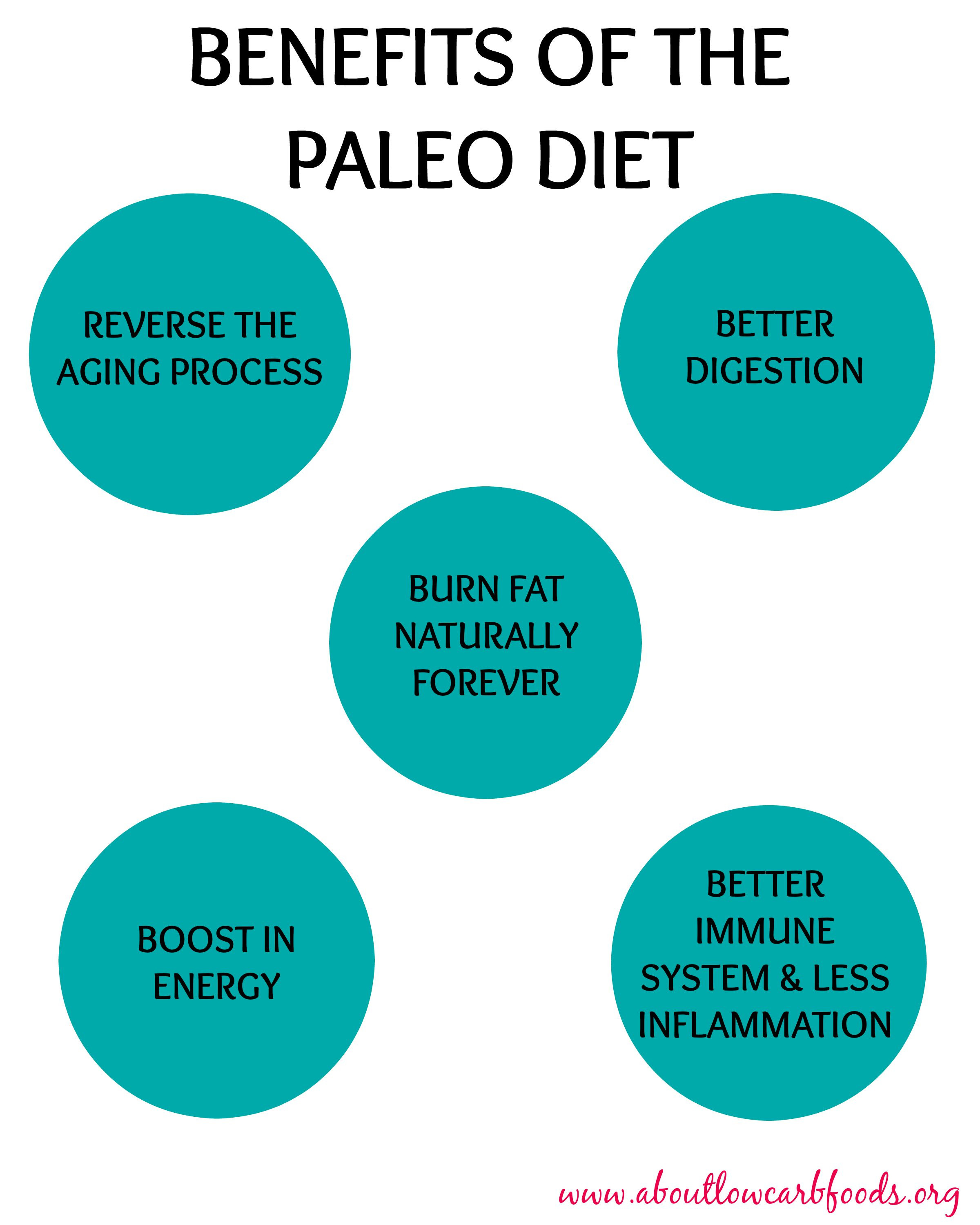 Paleo Diet Benefits  Paleo Diet Hack Recipes – Great Recipes for Healthy Living