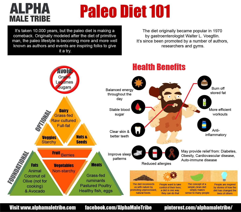 Paleo Diet Benefits  What is the Paleo Diet Bundilla Clinic