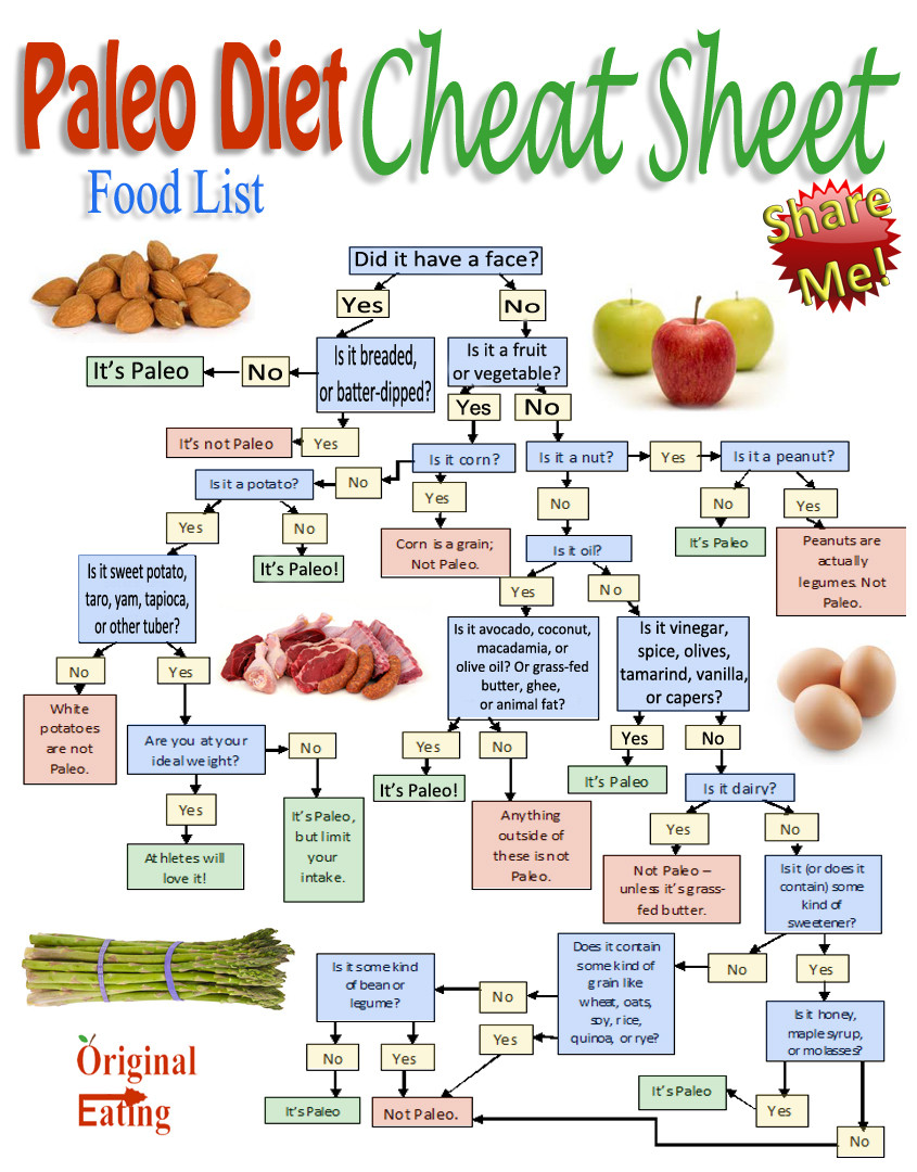 Paleo Diet Food List  9 Best of Diet Grocery List Printable Paleo Diet