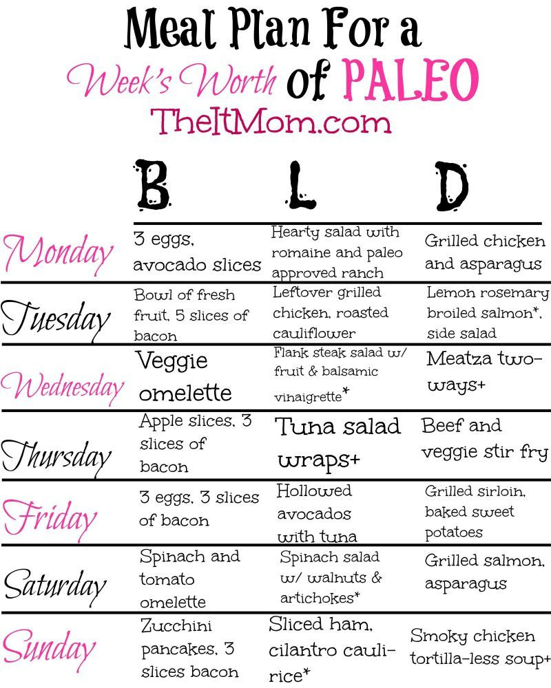 Paleo Diet For Beginners  The Paleo Diet A Beginner s Guide and Meal Plan