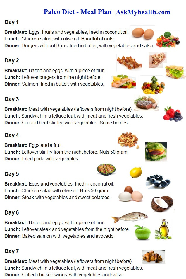 Paleo Diet Meal Plans  15 Day Paleo Diet Meal Plan Every Thing About Paleo Diet