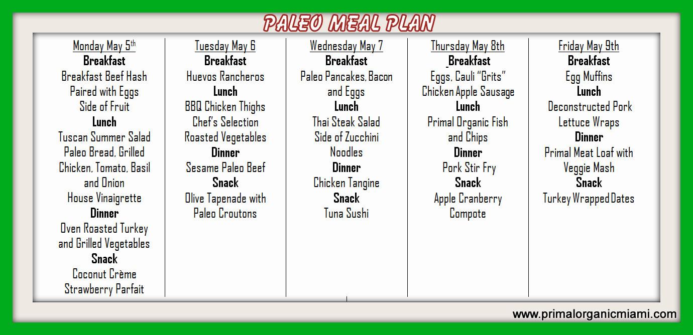 Paleo Diet Meal Plans  2014 52 Weeks Paleo Primal Organic