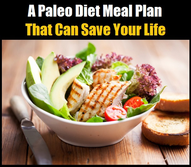 Paleo Diet Reviews  Paleo Diet Book Review duckgala
