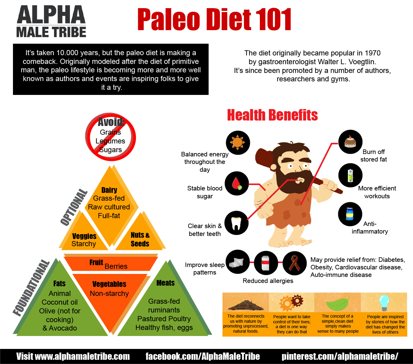 Paleo Diet Rules  What is the Paleo Diet Bundilla Clinic