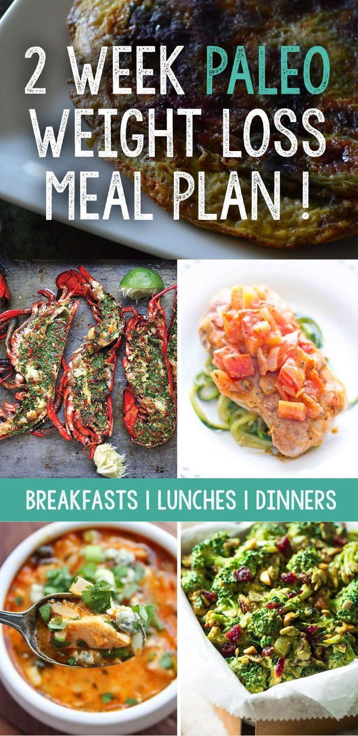 Paleo Diet Wiki  25 best ideas about Weight Loss Plans on Pinterest